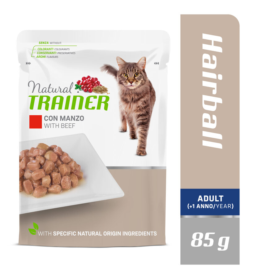 Trainer Hairball with Beef
