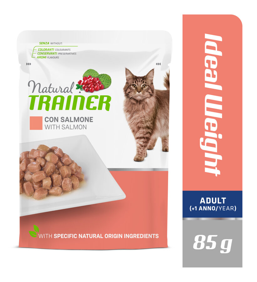 Trainer Ideal Weight with Salmon