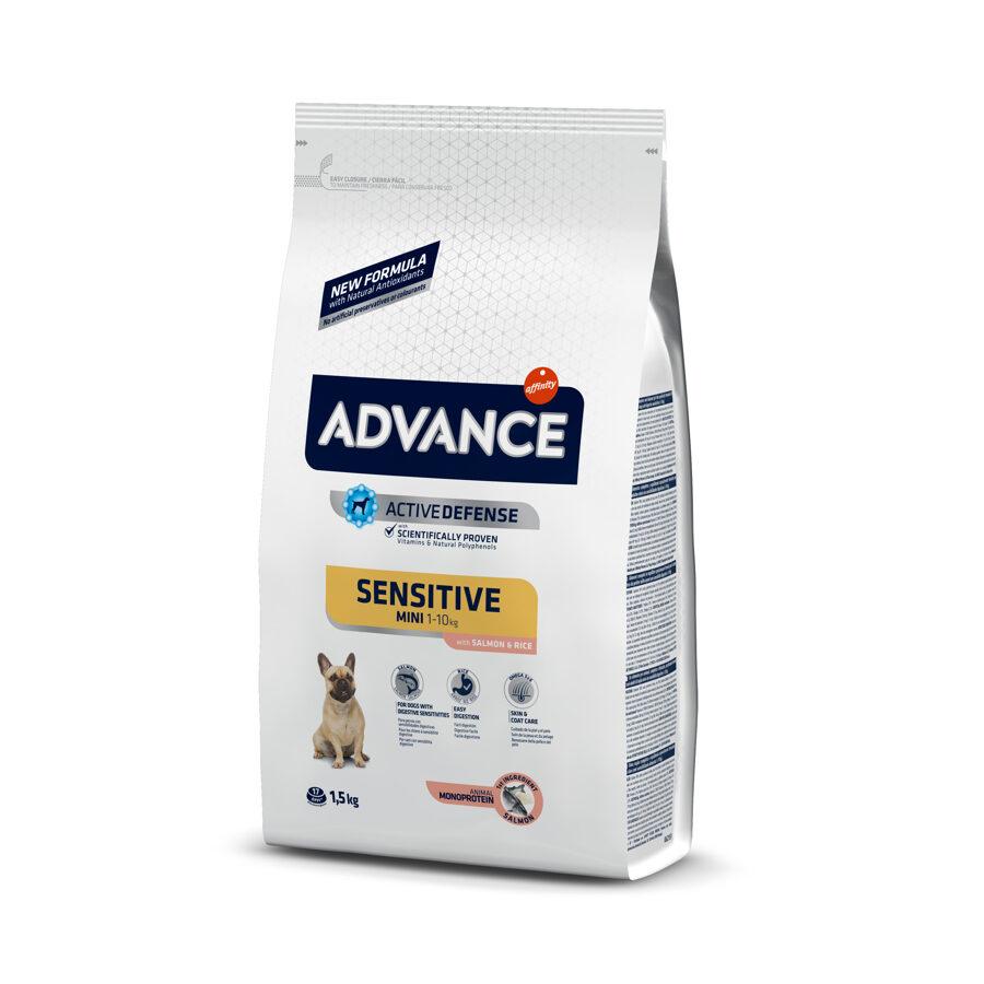 Advance Mini Sensitive Salmon&Rice